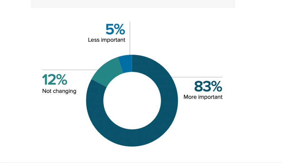 video-marketing-survey